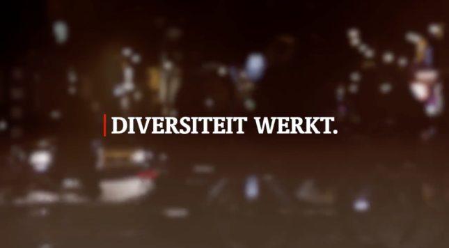 Diversiteit_werkt